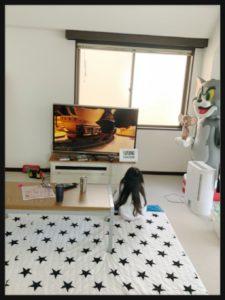 松嶋尚美自宅リビング