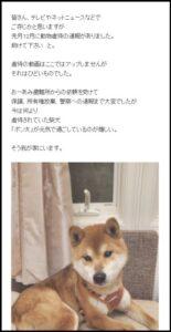 門倉健の愛犬ポン太